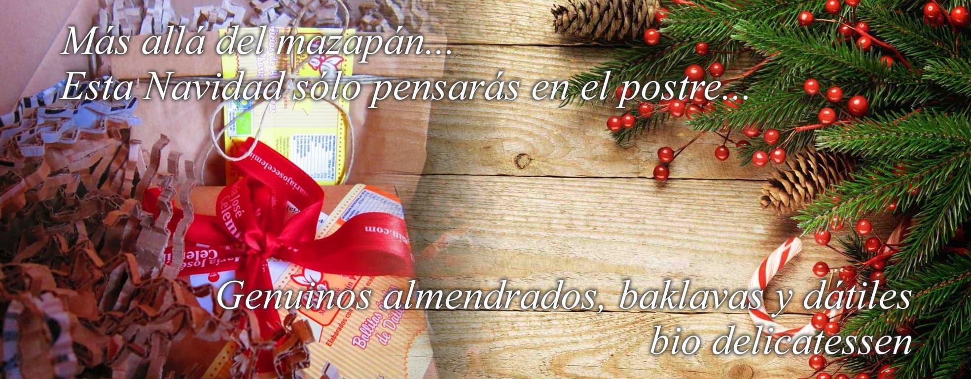 María José Celemín Navidad