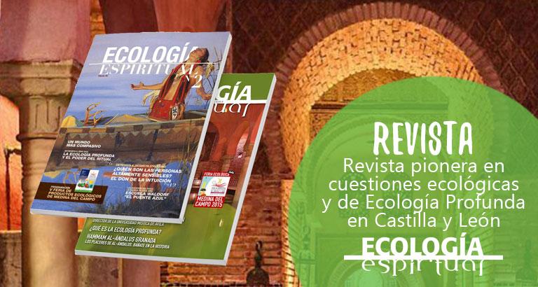 María José Celemín - Revista