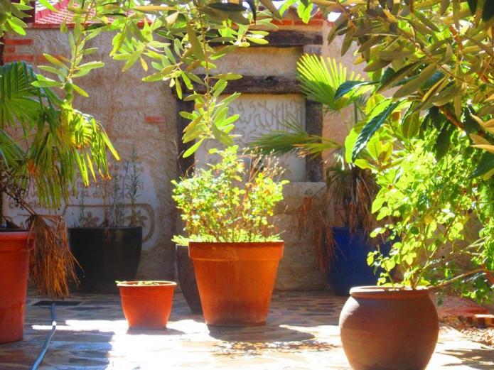 Desayunos ecológicos, cafeterías, pastelerías ecológicas Valladolid