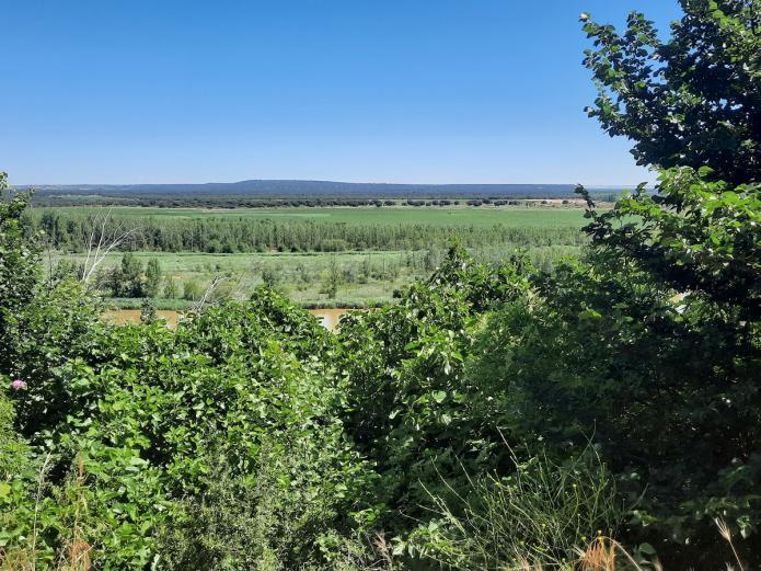 Reserva natural de Castronuño - una amazonía
